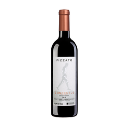 Pizzato Concentus 2017 (750ml)