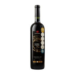 Guatambu Rastros do Pampa Cabernet Sauvignon 2019 (750ml)