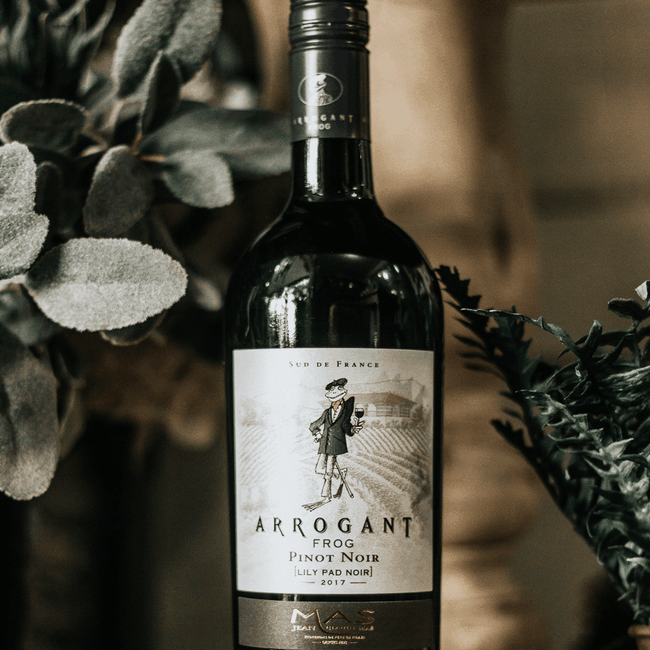 Arrogant Frog Pinot Noir 2018 (750ml)