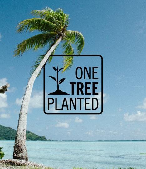 [socio-ambiental] One Tree Planted