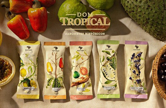 banner colecao - DOM TROPICAL