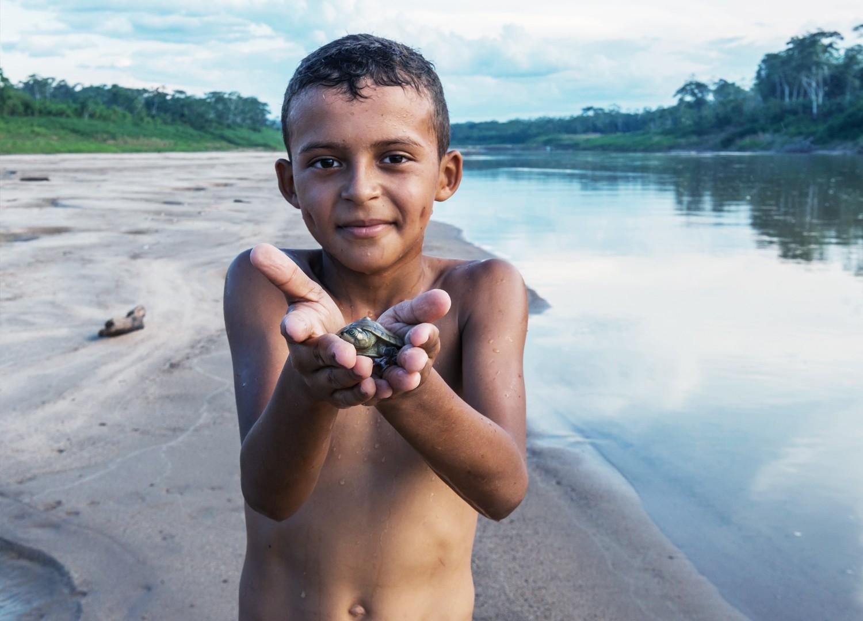[1% para a Amazônia] Seção da página